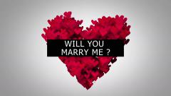 Will You Marry Me ? 4K Resolution UHD Ultra HD Stock Footage