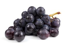 Wet cluster of blue grapes - stock photo