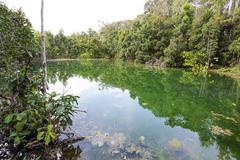 Emerald Pool Stock Photos