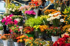 Street flower shop with colourful flowers Stock Photos
