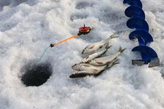 Fishing rod, ice screws, hole and  fish Stock Photos