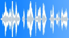 Thank you for using our service   (Urdu Language Voice Over) Stock Music