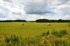 Stock Photo of summer nature countryside views- Czech republic