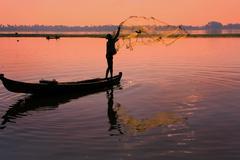 Local man fishing with a net, Amarapura, Myanmar - stock photo