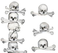 Stock Photo of Human skulls and bones