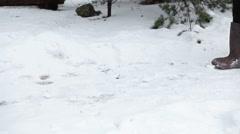 Woman walk on the snow in felt boots, side view, winter season Stock Footage