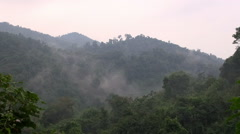 Jungle Mist 4 - Time-Lapse Stock Footage