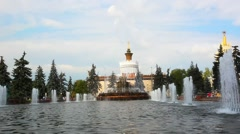 Moscow, fountain . Stone flowe in main national exhibition centre. HD. 1920x1080 Stock Footage