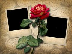 Two Polaroid-style photo  with red rose in vintage style Kuvituskuvat