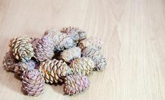 Stock Photo of cedar cones on the floor