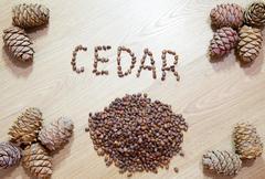 Stock Photo of cedar cones with nuts