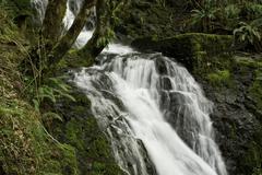 Oregon Waterfall - stock photo