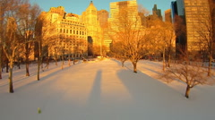 Battery Park New York Winter aerials Stock Footage