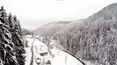 Flying over pine forest, black forest, germany Stock Footage