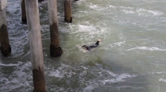 Aerial Shot of Surfer Swimming Under the Bridge Stock Footage