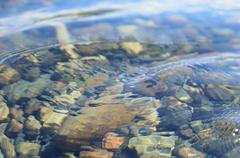Stock Photo of clear fresh clean river water in summer sun with rocky bottom