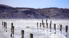Hudson River Ice Flow Stock Footage
