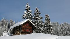 Little chalet and firs - stock photo