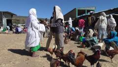 Market in Axum - Ethiopia, East Africa Stock Footage