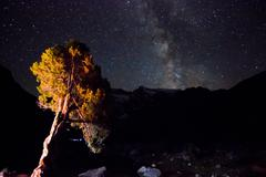 Milky way above the mountains with tree highlighted Stock Photos