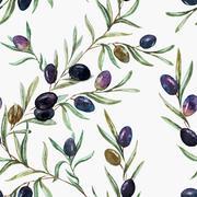 Olives - stock illustration