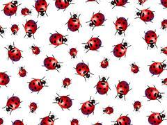 ladybirds - stock illustration