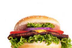 A Tasty Hamburger with Salad and Tomato, Isolated Stock Photos