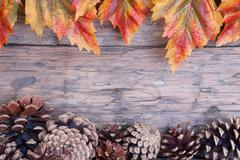 Fall Background with Frame of Autumn Leaves and Fir Cones - stock photo