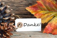 A Fall Background with the German Words Danke which means Thanks - stock photo