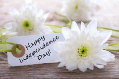 Stock Photo of White Flowers in the Background White Flowers with Happy Independence Day