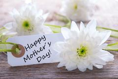 White Label with Happy Mothers Day and White Blossoms Stock Photos