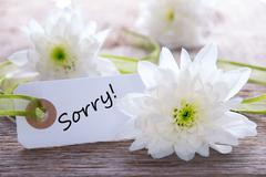 White Tag with the Word Sorry on it and White Flowers in the Background Stock Photos