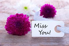 Label with Miss You and Flowers as Background Stock Photos
