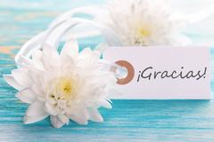 Tag with the Spanish Word Gracias which means Thanks on Wooden Background - stock photo