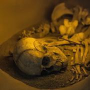 Ancient human skull bone and skeleton - stock photo