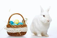 Little Easter bunny in the basket Stock Photos
