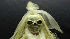 Scary Cute Smiling Skeleton Bride With Veil On Stock Footage