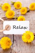 White Tag with the Word Relax on it and many yellow Flowers - stock photo