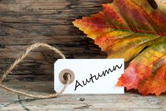 Autumn written on a label with colorful Fall Leaf in the Background - stock photo