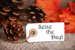 An Autumnal Label with the Words Seize the Day on it - stock photo