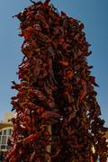 Pile dried chilies Stock Photos