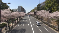Aerial view traffic car avenue Tokyo downtown cherry tree Sakura flower car pass Stock Footage