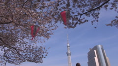Skytree building famous tall tower Sakura cherry tree Tokyo landmark icon emblem Stock Footage