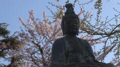 Beautiful Buddha statue Sakura cherry tree blossom flower Tokyo symbol landmark  Stock Footage
