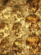 Stock Photo of Background with human skulls