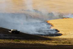 Agriculture Worker Burns Plant Stalks After Harvest Ground Fire - stock photo