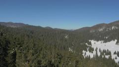 Aerial - Flight above pine forest. View at snowy valley with blue sky Stock Footage