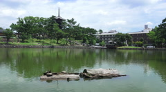 Nara Japan And Sarusawa-ike Pond On Sunny Day Stock Footage