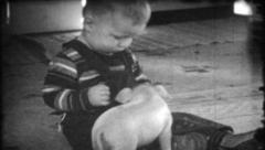 241 - toddler plays with family pet pig at home - vintage film home movie Stock Footage