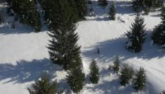 Aerial - Cross-country skiing in nature Stock Footage